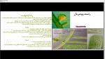دانلود پی دی اف جزوه تالوفیتها 219 صفحه PDF-1